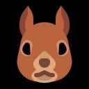 :ms_squirrel: